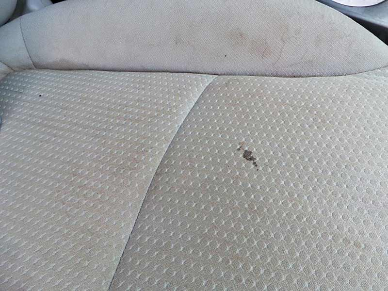This seat has some spill stains from greasy food. Nothing has been able to get the seat clean.