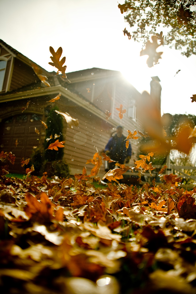Conventional leaf blowers can be used for more than just yard maintenance.