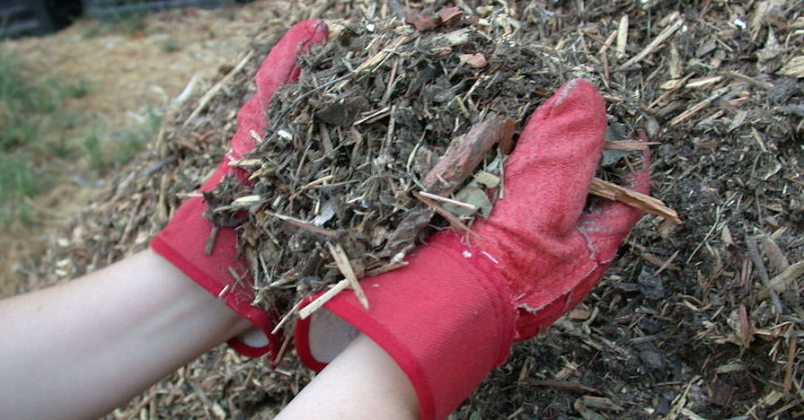 garden mulch