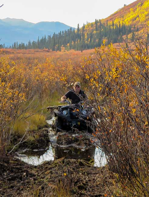 With an ATV, You Can Hit Any Trail You Want!