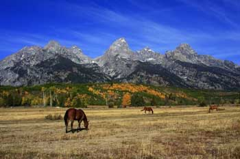 Grand Teton National Park in the Fall makes a great labor day road trips