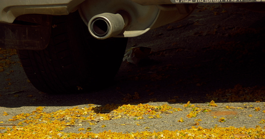 Leaves are a menace to your engine compartment during the fall.