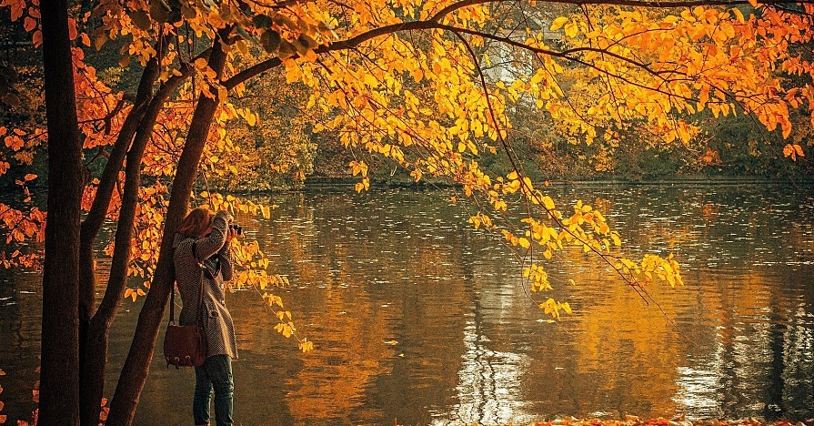 A woman photographing New England fall foliage