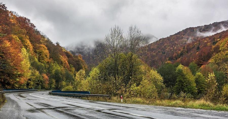 An open road during autumn. When leaves start to change color, it's a good time to check these seven fluids as part of your fall car care.