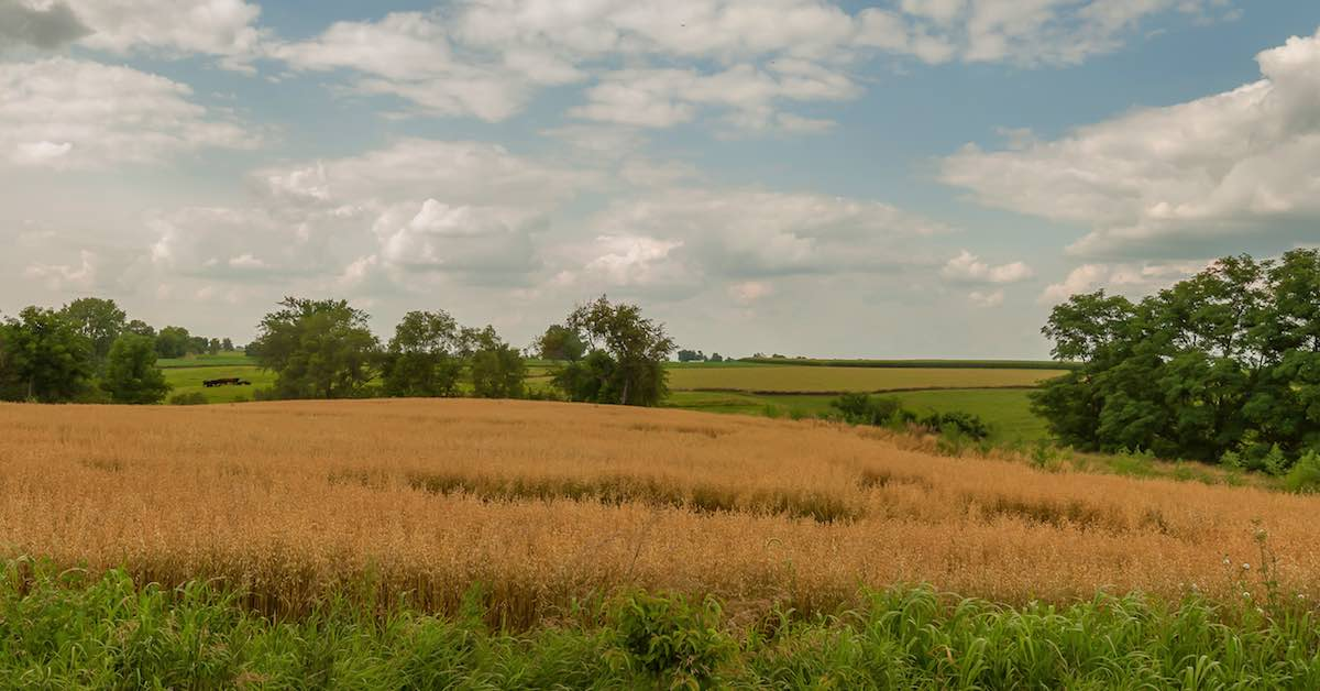 The scenic Iowa countryside. The Midwest is home to some of the prettiest parts of the United States. If you're planning a road trip through the Midwest, here are some places to visit.