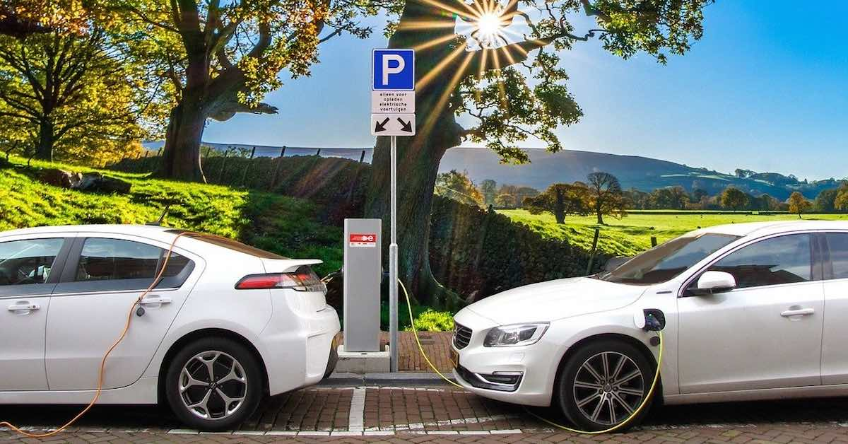 Two white electric cars charging next to a sunny landscape