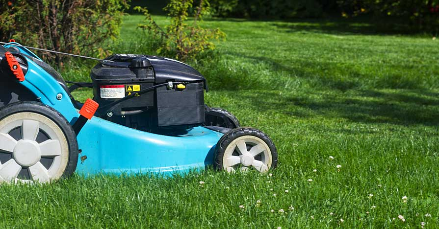 Supercharge your lawn moewr