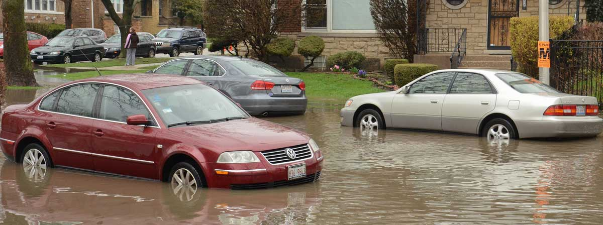 Flooded cars in Albany Park