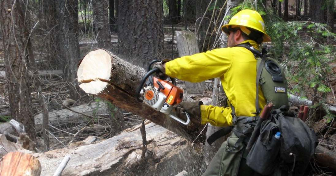 With the right chainsaw safety gear, you'll avoid becoming one of the 36,000 people injured by chainsaws annually.