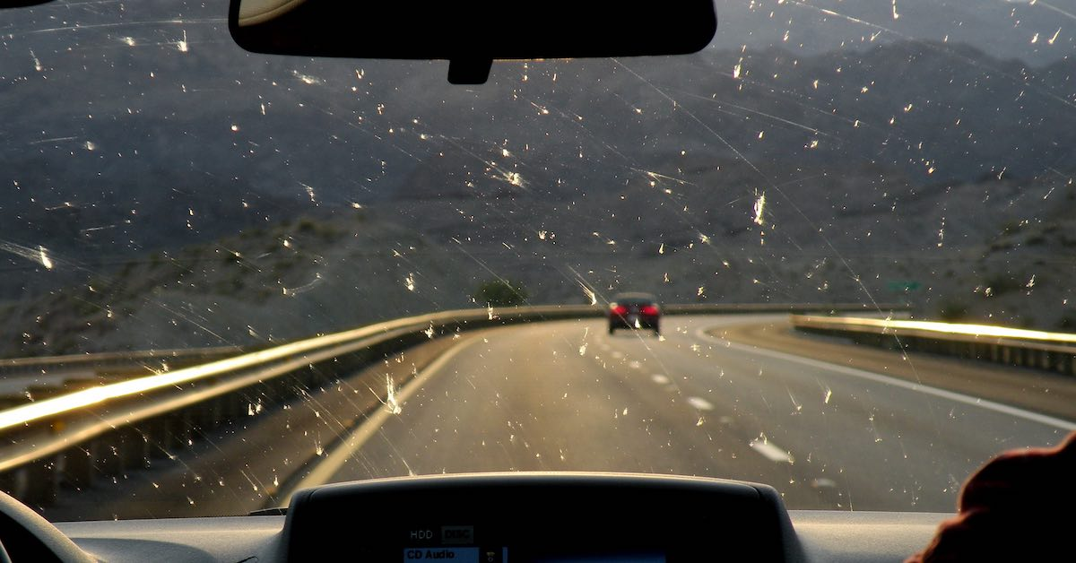 Splattered bugs on a windshield