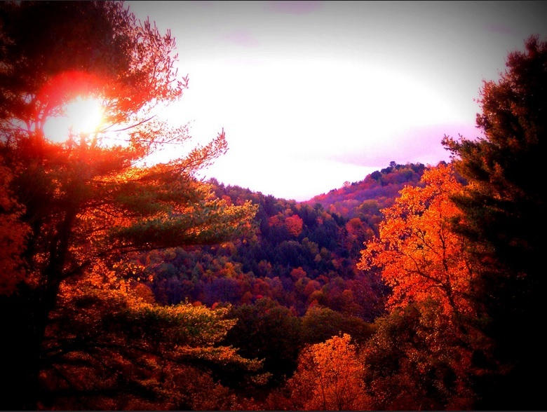 Crimson colors highlight the best leaf peeping trips in New England.