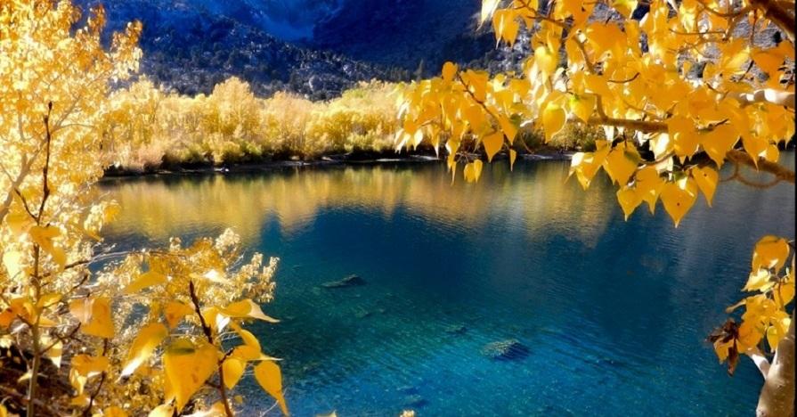 Best Leaf Peeping Trips