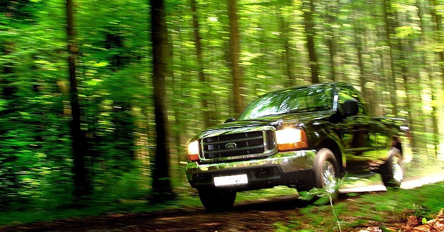 Truck driving in forest.