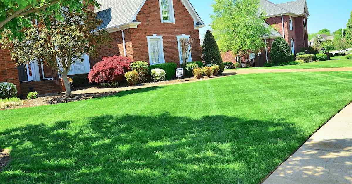 Mowing Lawn Patterns