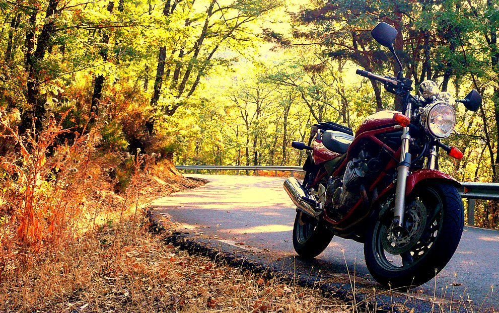 A great time to think about Fall motrocycle safety.