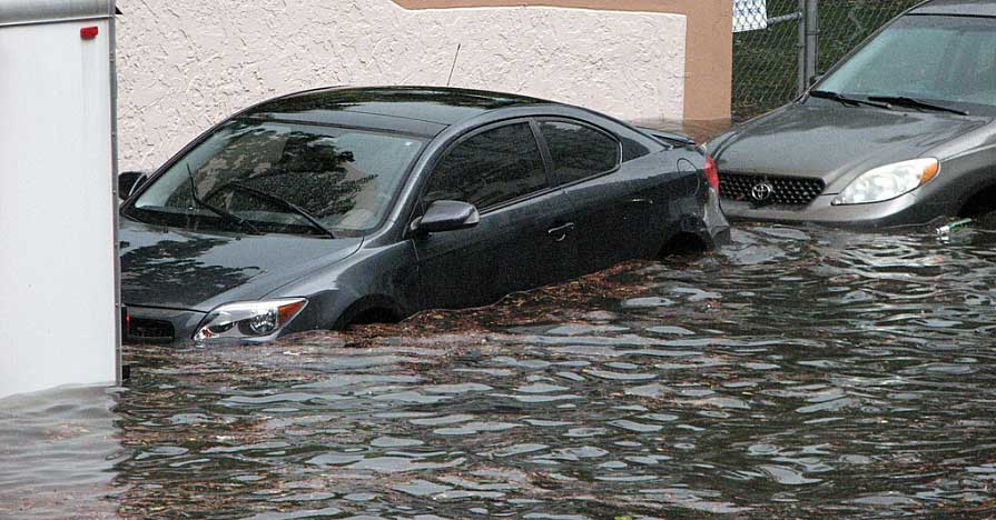 Learn how to check for car flood damage symptoms, like these cars will have.
