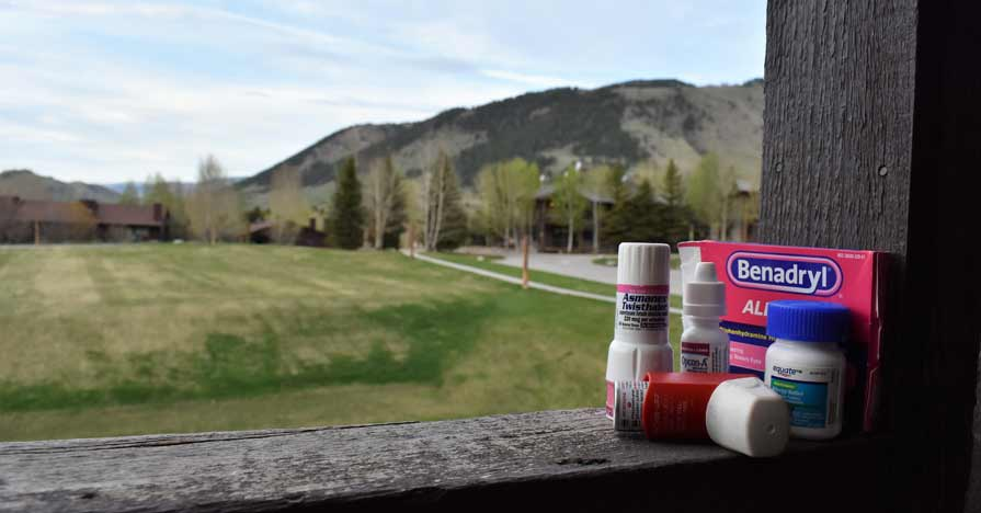 A porch railing is piled with Benadryl and other allergy medications. In the background is a gorgeous Midwestern scene: A grassy field stretches out to a stand of trees and a mountain.