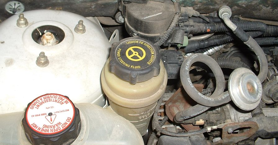 A power-steering fluid reservoir is located under the hood of a vehicle.