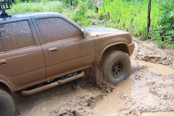 A car caked in mud in a wooded area
