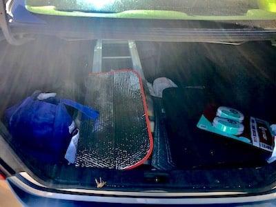 Disorganized trunk