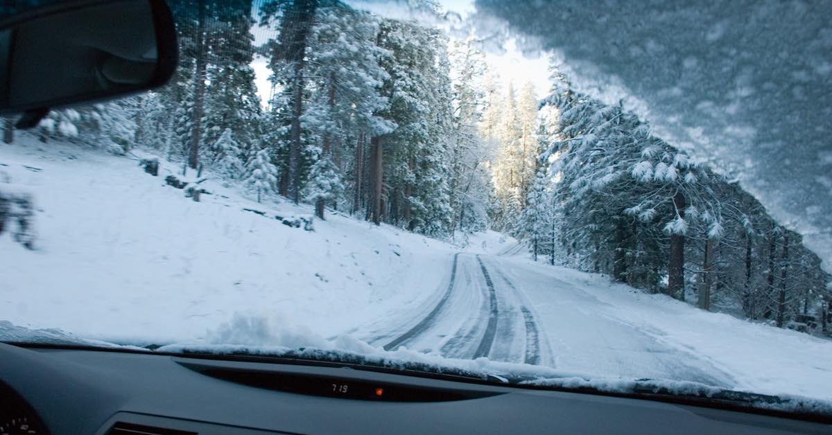 Looking through a car's windshield onto a snowy, tree-lined road