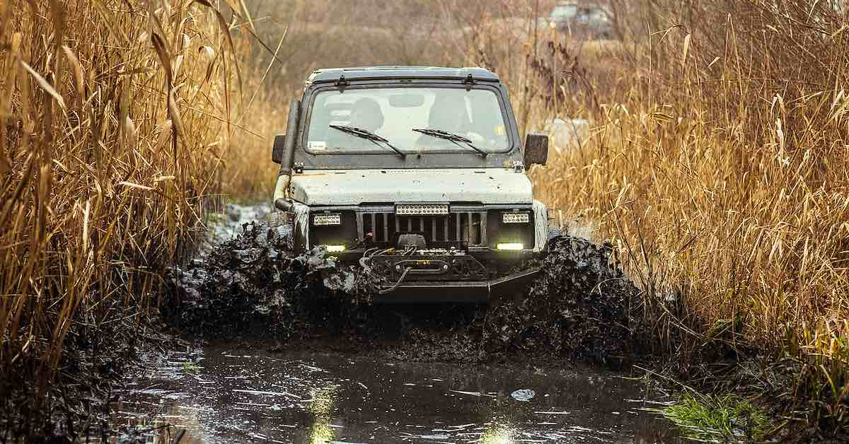 A vehicle driving through water with long grass on either side