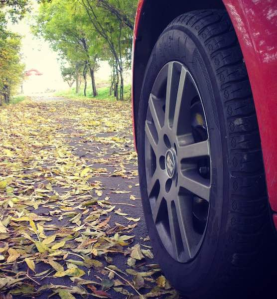 Tires and Leaves