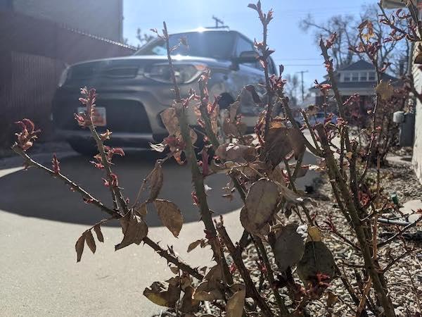 Spring Car Maintenance Tips