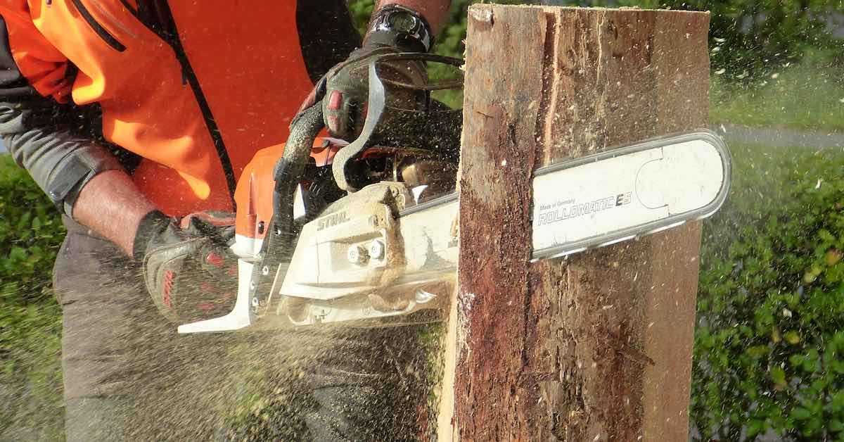 A man saws a tree stump with chainsaw.