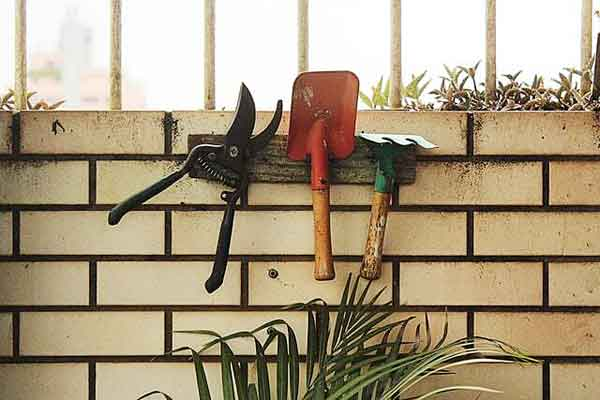 Garden shears are an essential lawn care tool. To be effective, the blades of this tool need to be kept sharp.